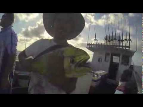 South West Rocks Fishing Charters