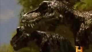 Nanotyrannus vs T-rex!