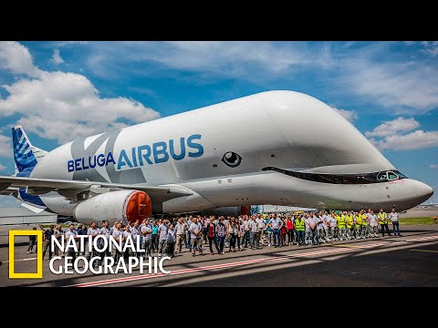 Суперсооружения: Аэробус Beluga XL