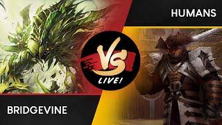 VS Live!   Bridgevine VS Humans   Modern   Match 1