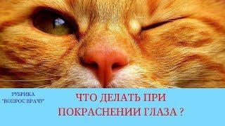 26.01.18 Покраснение глаза у кота