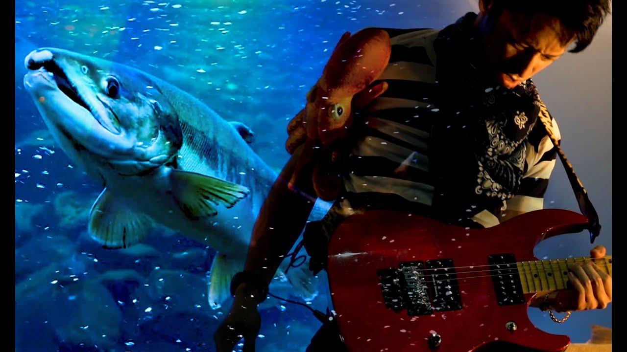 新MV「Salmon」公開!