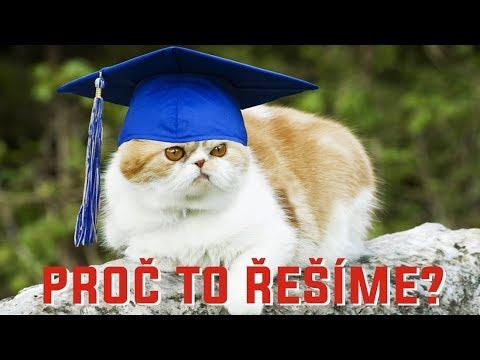Kočky a psi s vlastním titulem, diplomem a výzkumem - Proč to řešíme? #286