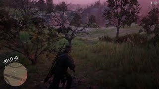 Red Dead Redemption 2 Hanging Torso Body Site Inspection 1 Near Valentine 111718