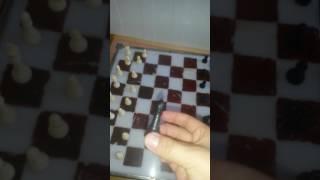 Как играть шахматы часть 1