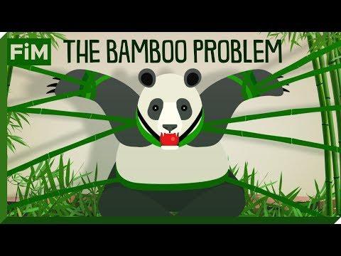 How Bamboo Slowly Kills The Panda - The Bamboo Problem