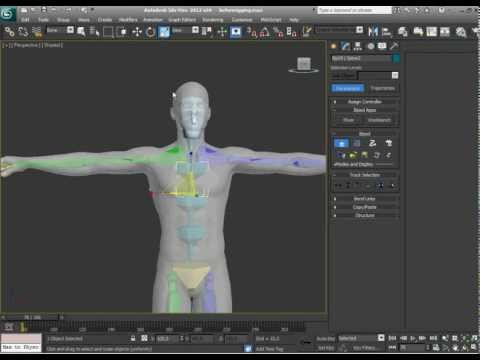 Part 1. Create Biped in 3DS Max