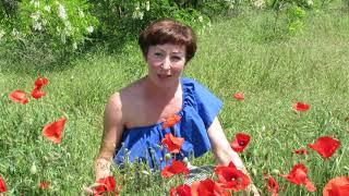 видео Пересыпь, Гостевой дом «Гавань», ул. Садовая, 8: цены, отзывы, фото