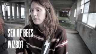 sea of bees wizbot the old vinyl factory sessions