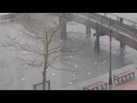 Jones Falls Trash in Baltimore's Inner Harbor