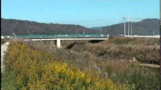 与謝野の秋 野田川と橋編