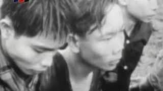 16 марта 1968 года Вьетнам деревня Сонг Ми