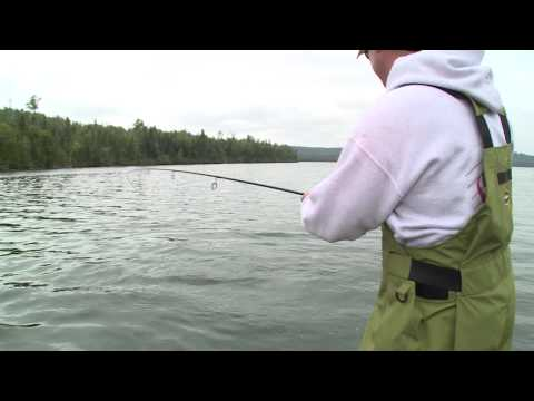 Brook trout fishing tips for Canadian lakes