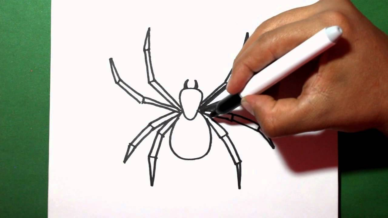 how to draw a spider - como dibujar una araña - painting - YouTube