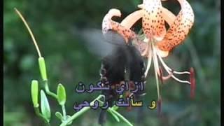 Arabic Karaoke Elissa Kan Nafsi A3ref