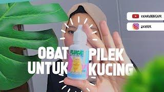 REVIEW OBAT PILEK FLU MURAH UNTUK KUCING