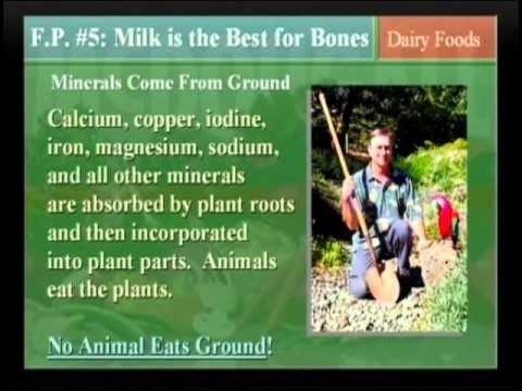 HOW THE DAIRY INDUSTRY DECEIVES THE PUBLIC