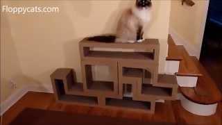 Katris Modular Cardboard Cat Scratcher Furniture Review - ねこ - ラグドール - Floppycats