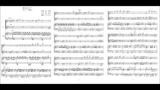 「天空の城ラピュタ」の主題歌「君をのせて」のフルート二重奏版(参考...