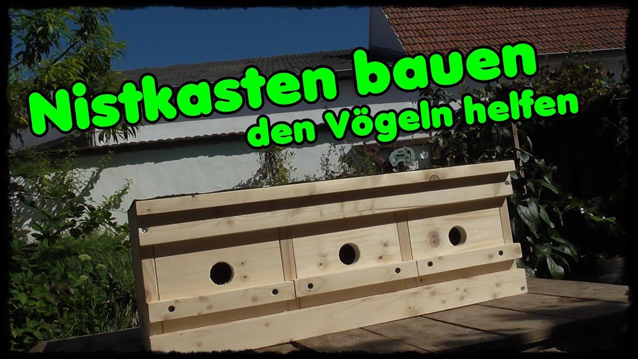 nistkasten bauen den v geln helfen brutkasten bauen youtube. Black Bedroom Furniture Sets. Home Design Ideas