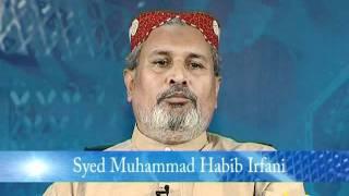 تشدد...Tashadud by Syed Mohammed Habib Irfani Peer Sahab of Sundar Sharif Lahore..avi