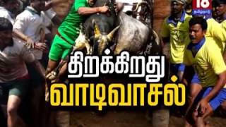 Historical Protest of Tamilians for Jallikattu - Exclusive report