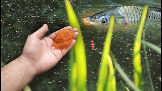 Садок поднять не могу Насыпал это на рыбалке и клёв попёр как дурной