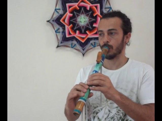 Native Flute Libelle B (Si)