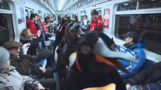 Пингвины Жгут!!!