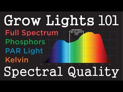 Color light penetration depth