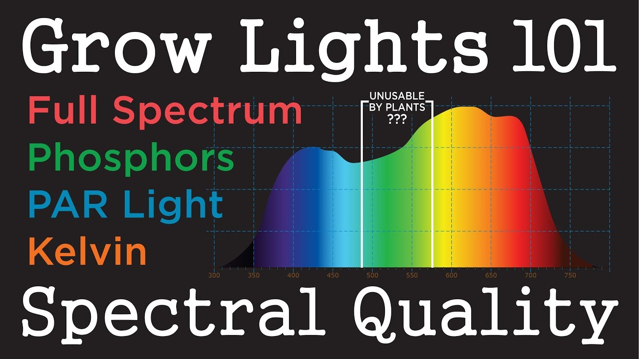 PAR Light Quality LEDs & HID: Plant Grow Light Basics -101 (pt 1)