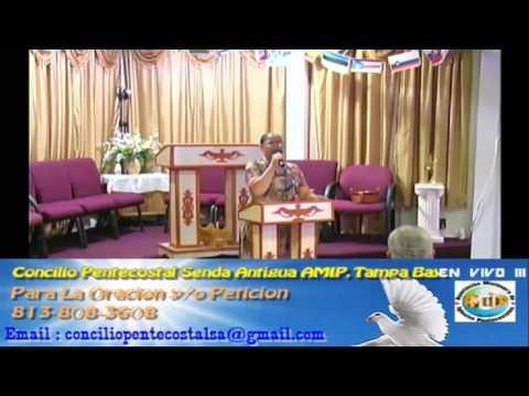 Culto Evangelistco Concilio Pentecostal Senda Antigua AMIP Tampa Bay. - 08-21-2016