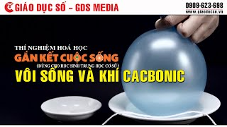 [Hóa học] Vôi sống và khí cacbonic - [Science] Reaction of Calcium oxide and Carbon dioxide gas