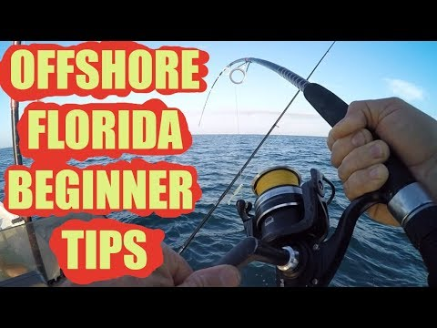 Some Beginner Tips For Offshore Fishing Florida (Steps To Su