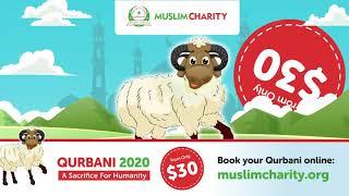 QURBANI 2020 | MuslimCharity.org.uk |  $30 QURBANI USA | SHARE HAPPINESS | ORDER NOW | | UDHIYA