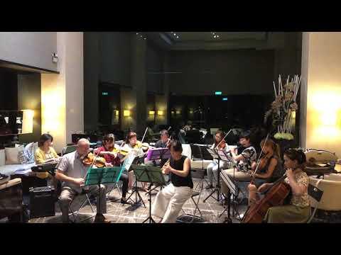 Bach Concerto For Oboe And Violin BMV1060 Mov.1