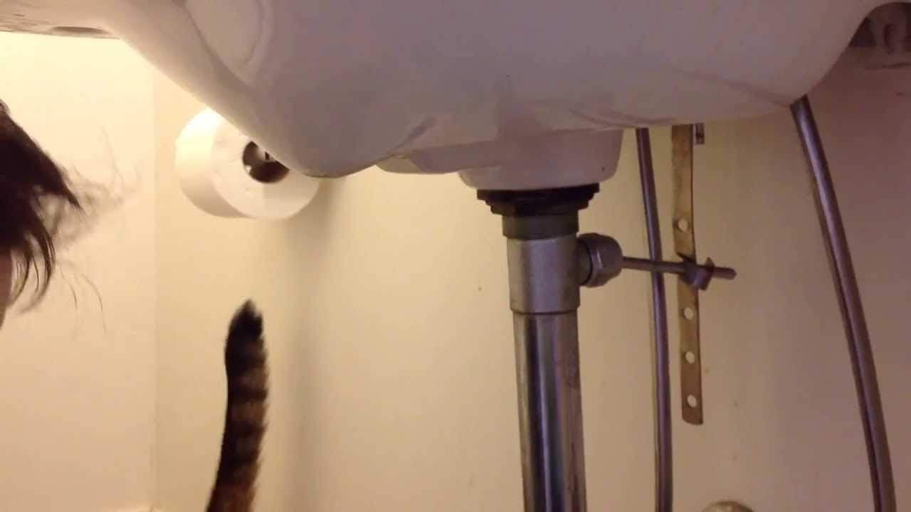 how to fix that leak under the sink