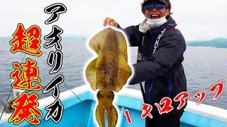 #2 投げればすぐ釣れる!?アオリイカ大爆釣!