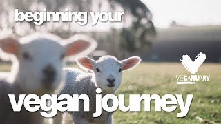 VEGANUARY Day 2 | Beginning Your Vegan Journey with LDN Vegans