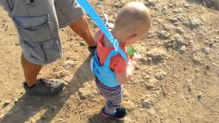 Baby Harnesses - Handheld Baby/Toddler Walking Protective Review - Learning Assistant Helper