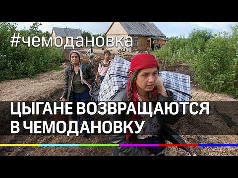 """""""Я не знаю, как они будут там жить"""" – цыгане возвращаются в Чемодановку"""