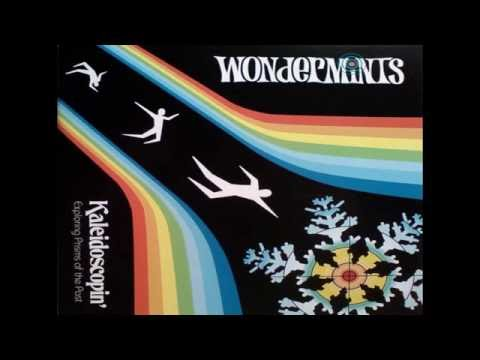 Wondermints - Playtex Aviary (revisited)