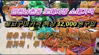 남촌동 농산물시장 꿀고구마가격, 배추가격, 생강가격, …