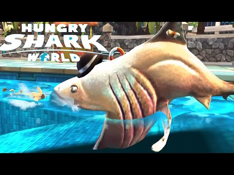World Fattest Shark Invade Hunman Pool | Hungry Shark World