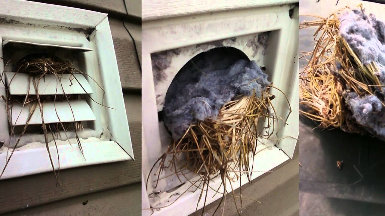 Introducing The Spinnervent The Ultimate Dryer Vent