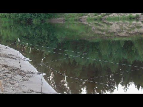 Вечерняя рыбалка на донки. Июль 2018. 1/2. /Охота и рыбалка #54/