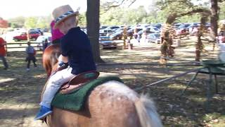 Pony Ride with Cute Kid