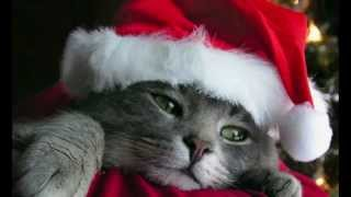 Beautiful Christmas Songs Mix Soft Music for Dinner or Party.mp3