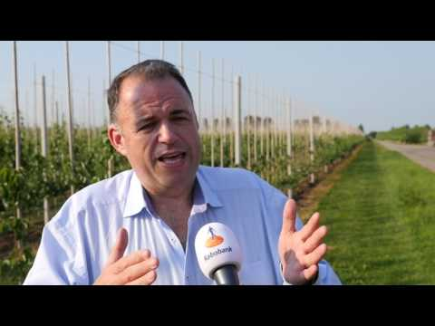 Global Farmers Master Class - strategy