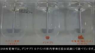【UHAグミサプリ】 第1回「吸収効率~ルテイン編」